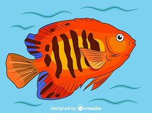 Flame Angelfish vector