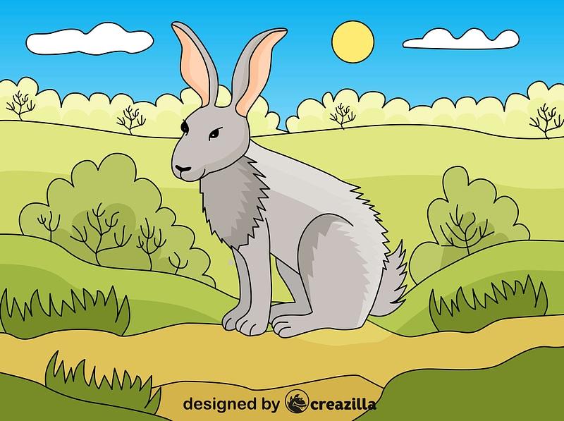 Hare vector