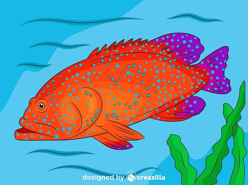 Blue Spotted Grouper vector