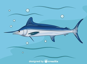 Atlantic White Marlin vector