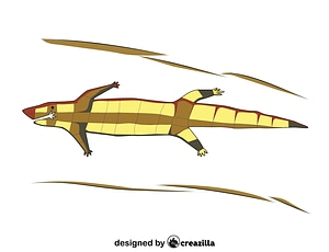 Lizard Aboriginal Art vector