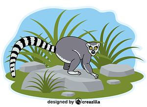 Lemur vector