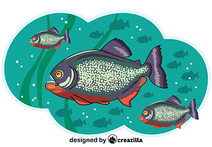 Piranhas vector