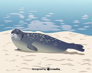 Caspian seal vector
