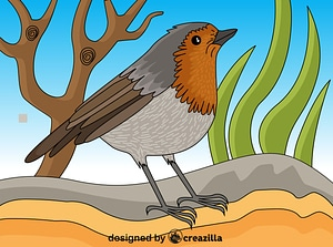 Robin vector