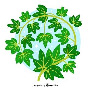 Vector de Ivy