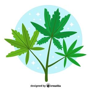 Vector de Marijuana