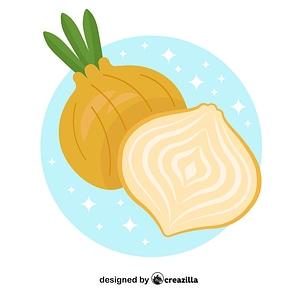 Vetor de Onion