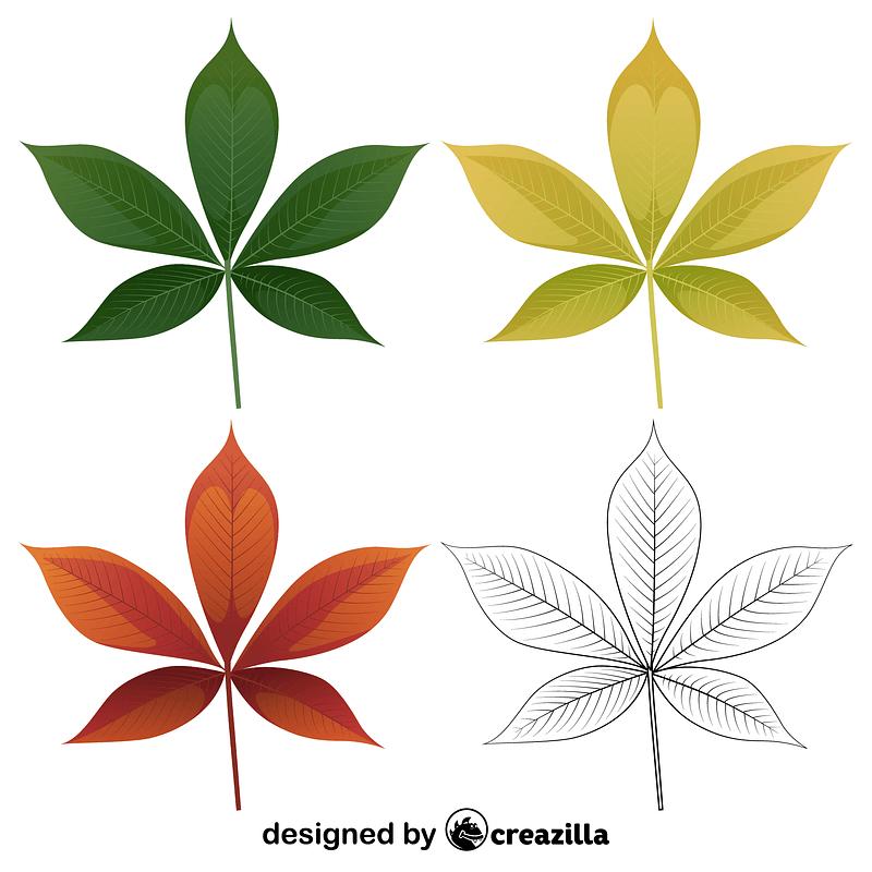 Ohio buckeye leaves vector