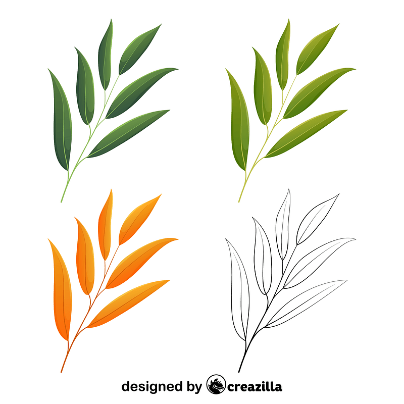 Willow oak leaves vector