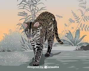 Iriomote Cat vector