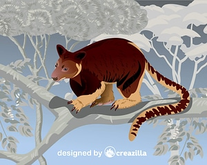Golden-Mantled Tree-Kangaroo vector