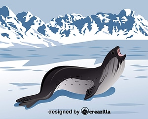Ross Seal vector
