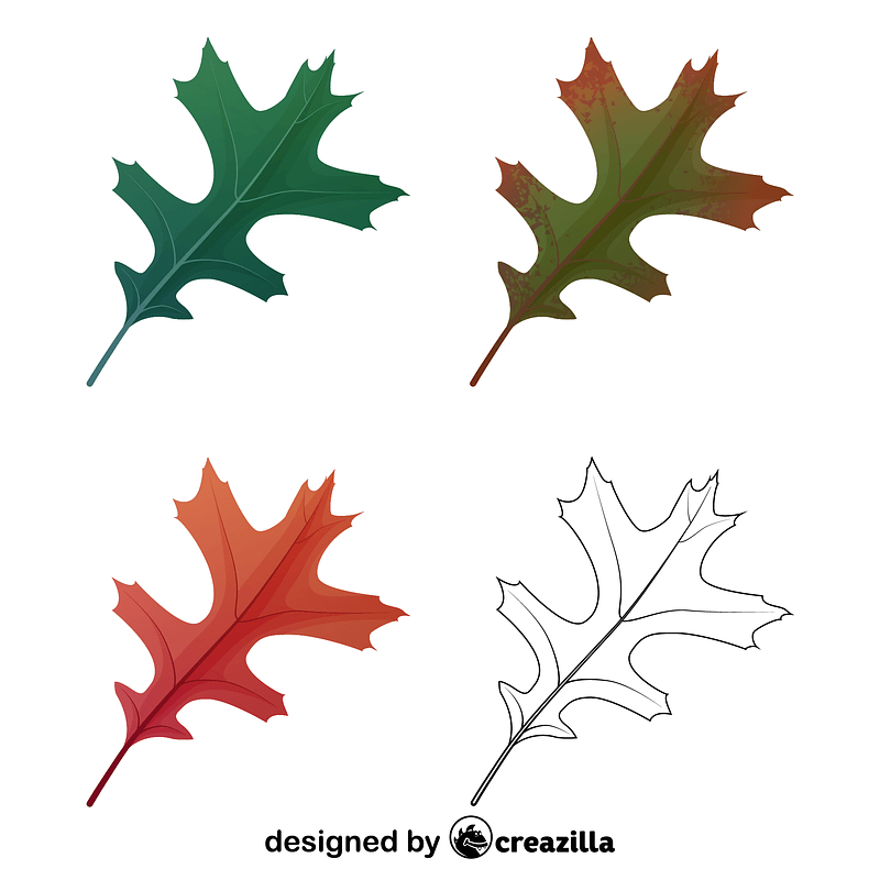 Pin oak leaves vector