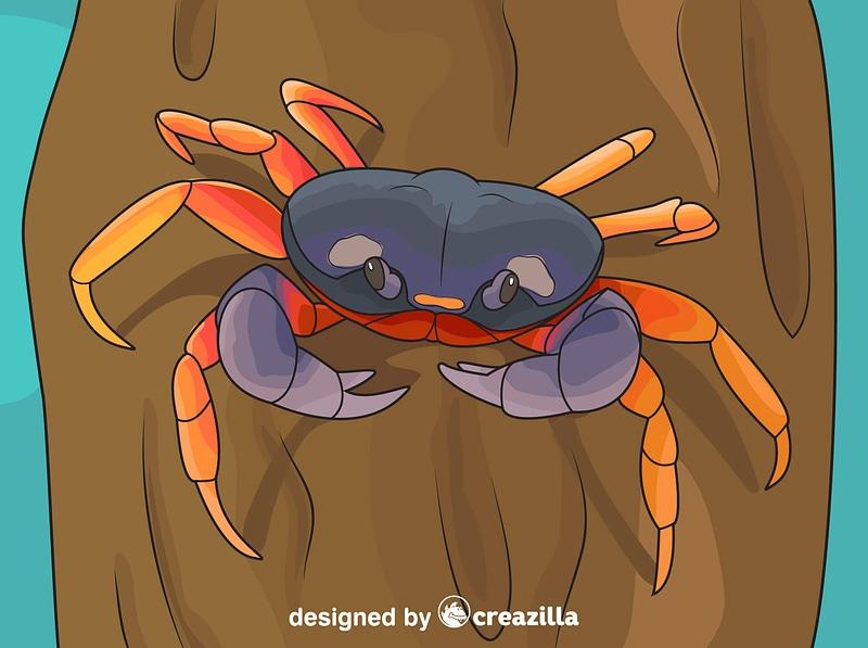 Halloween Crab vector