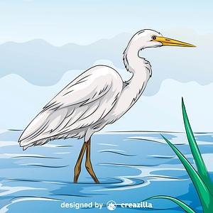 Yellow-Billed Egret vector