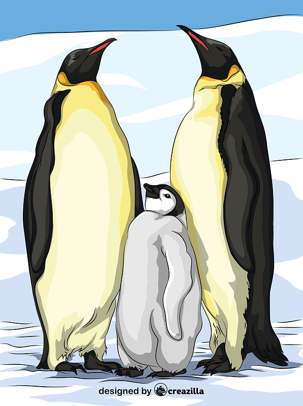 The Emperor Penguins vector