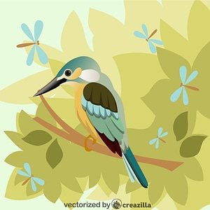 Kingfisher bird vector