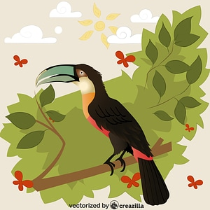 Red-billed Toucan vector