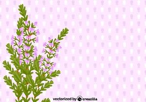 Heather card vector