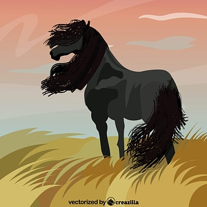 Black Horse on the Meadow vector
