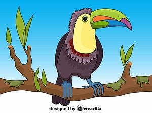 Toucan vektor