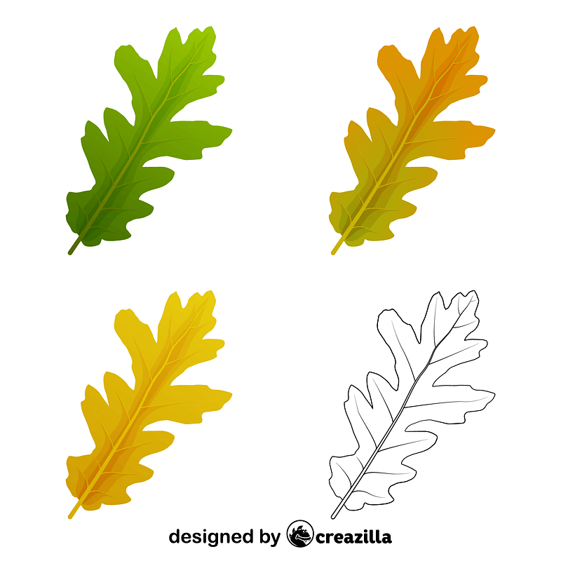 Turkey oak leaves vector