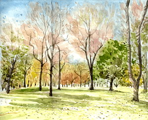 Watercolor forest painting vector