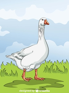 Domestic Goose vector