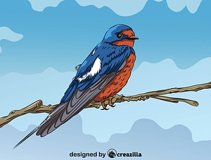 Barn Swallow on the Branch vector