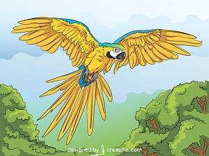 Ararauna Parrot vector