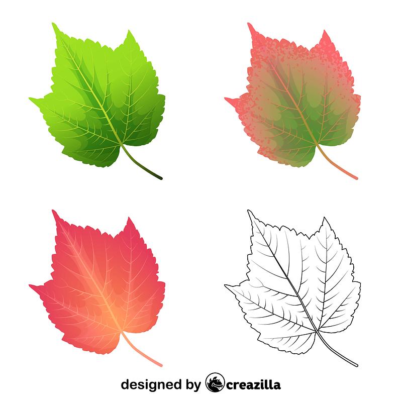 Mountain maple leaves ベクターイメージ狐