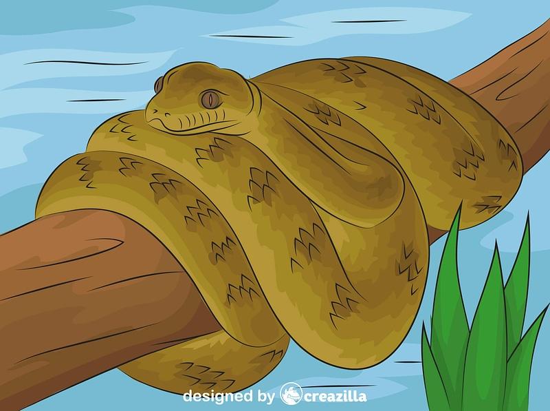 Scrub Python vector