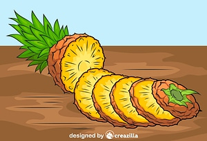 Pineapple Cut into Pieces vector