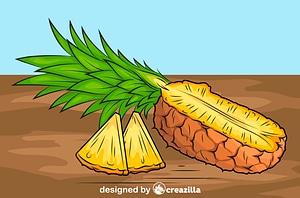 Fresh Pineapple vector