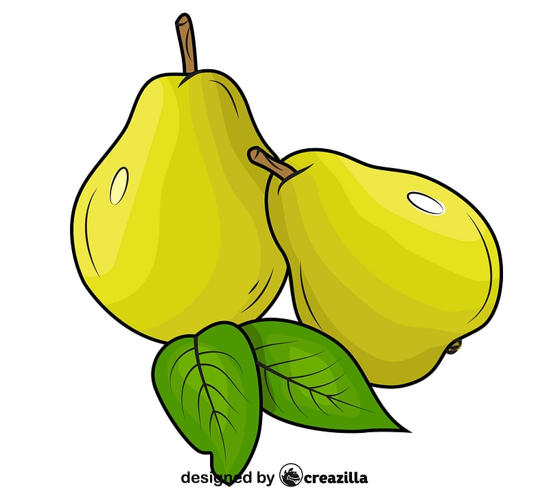 Pears with Leaves vector