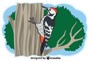 Woodpecker vector