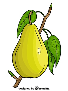 Pear on the Branch vector