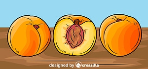 Peaches on the Table vector