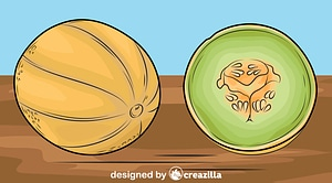Melons on the Table vector