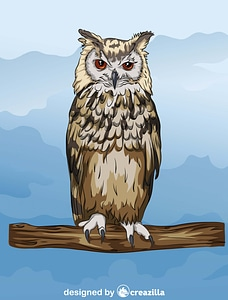 Indian Or Bengal Eagle Owl vector