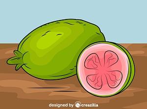 Fresh Guavas vector