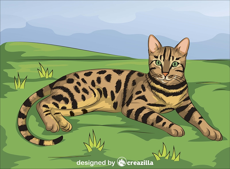 Brown Spotted Tabby Bengal Cat vector